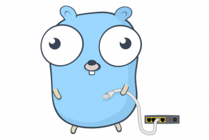 golang for iot software